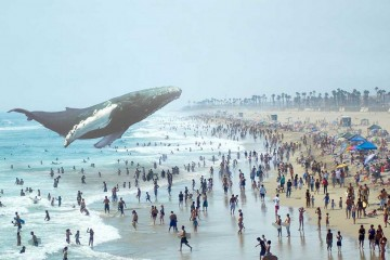 magic_leap