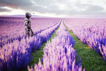Sabre-voit-automatisation-authenticite-tendances-phares-travel-2018