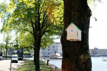 À Amsterdam, le Wifi est gratuit si le taux de pollution est bas